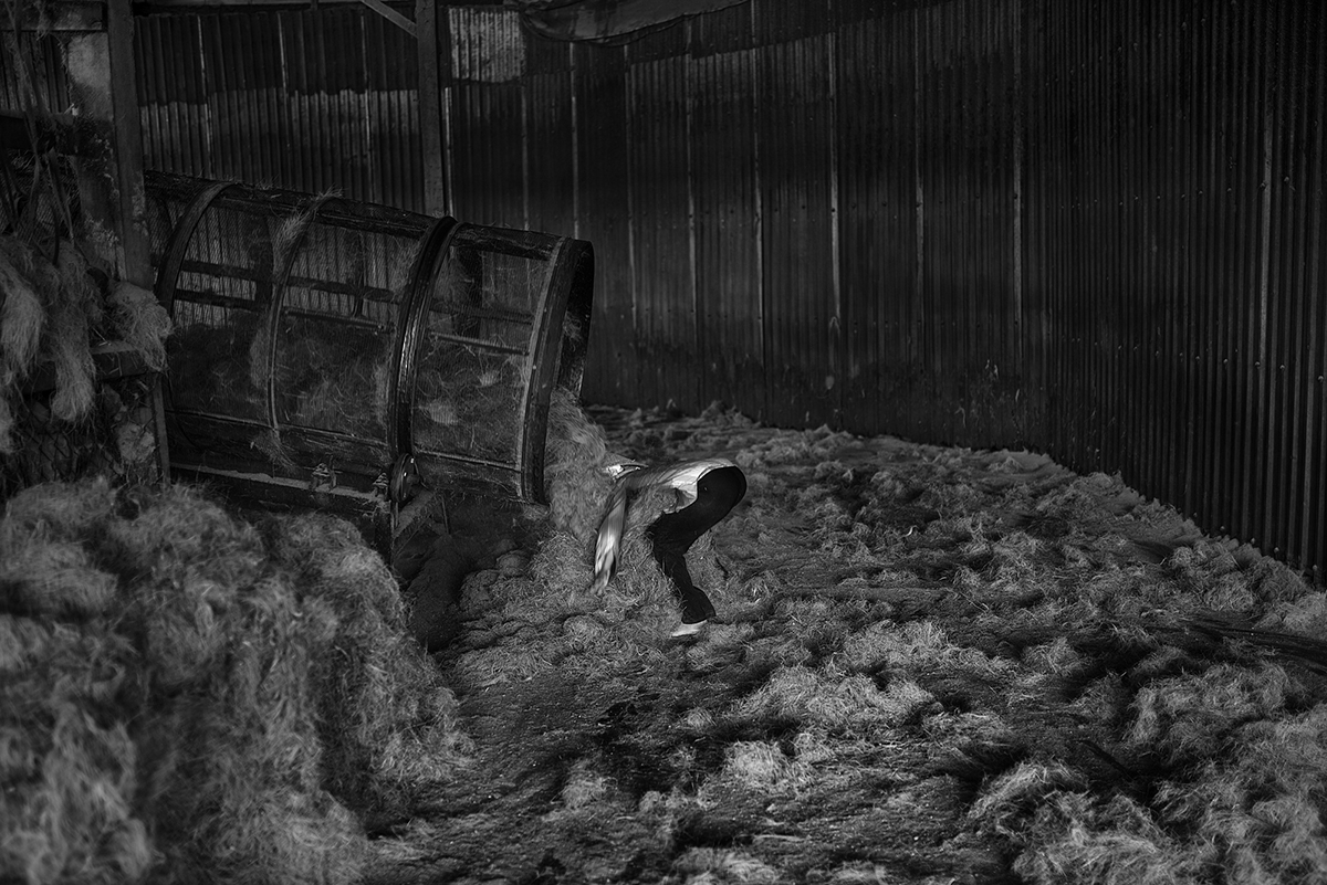A factory worker pulls long coconut husk fibres from a tumbling machine
