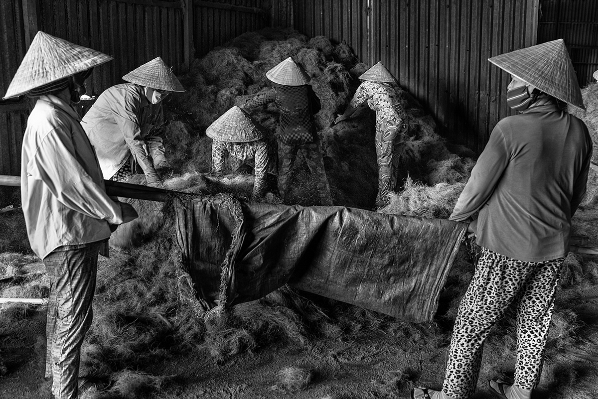 Factory workers gather coconut husk fibres that are carried outside to be dried in the sun