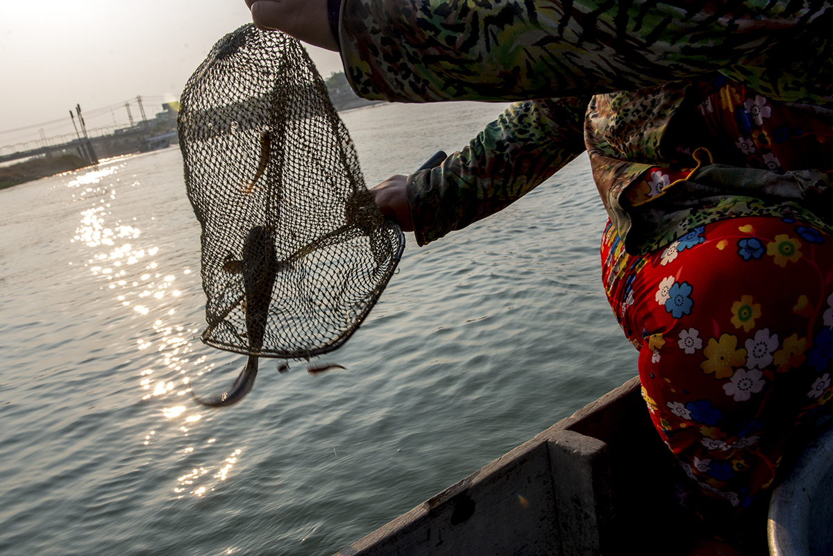 Giau releases a fish back into the river