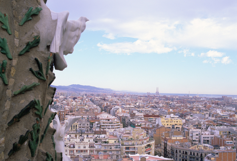 Doves , the gargoyles of peace , over the Barcelona skyline