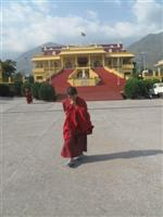 A young Monk walks in Gyuto Compex, the temporary residence of  17th Karmapa Lama
