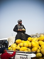 Alkazai melon seller