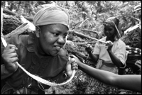 A woman is being helped to load her firewood on her back.